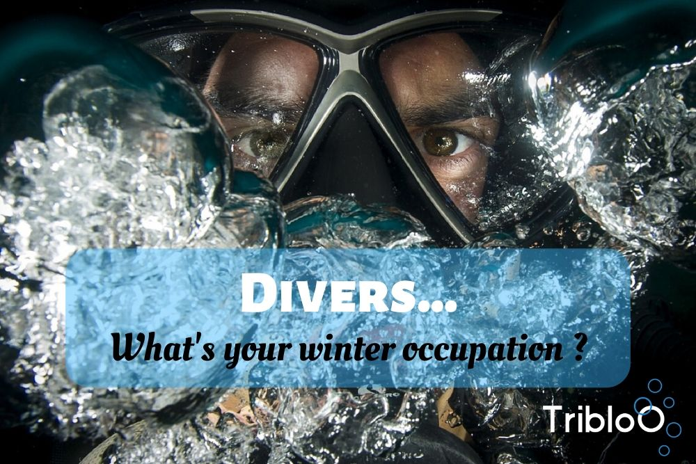 Divers… What's your winter occupation ?