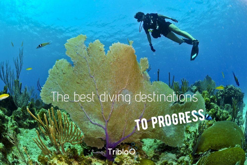 the best diving destinations to progress