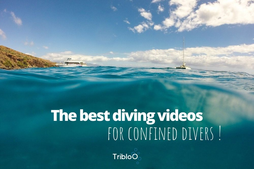 the best diving videos for confined divers