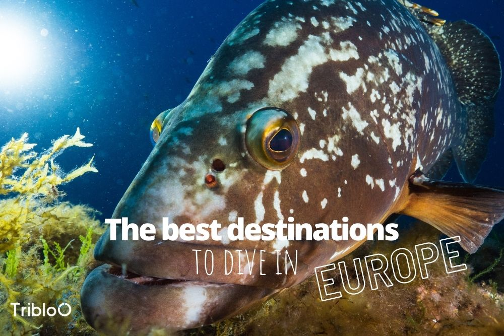 The best destinations to dive in Europe