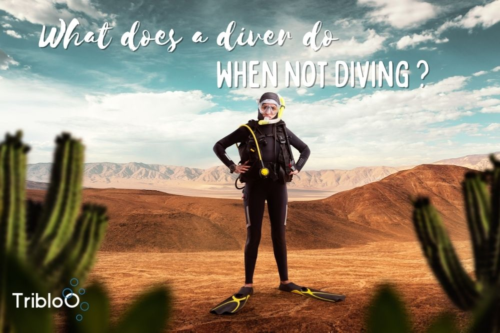 What does a diver do when not diving ?
